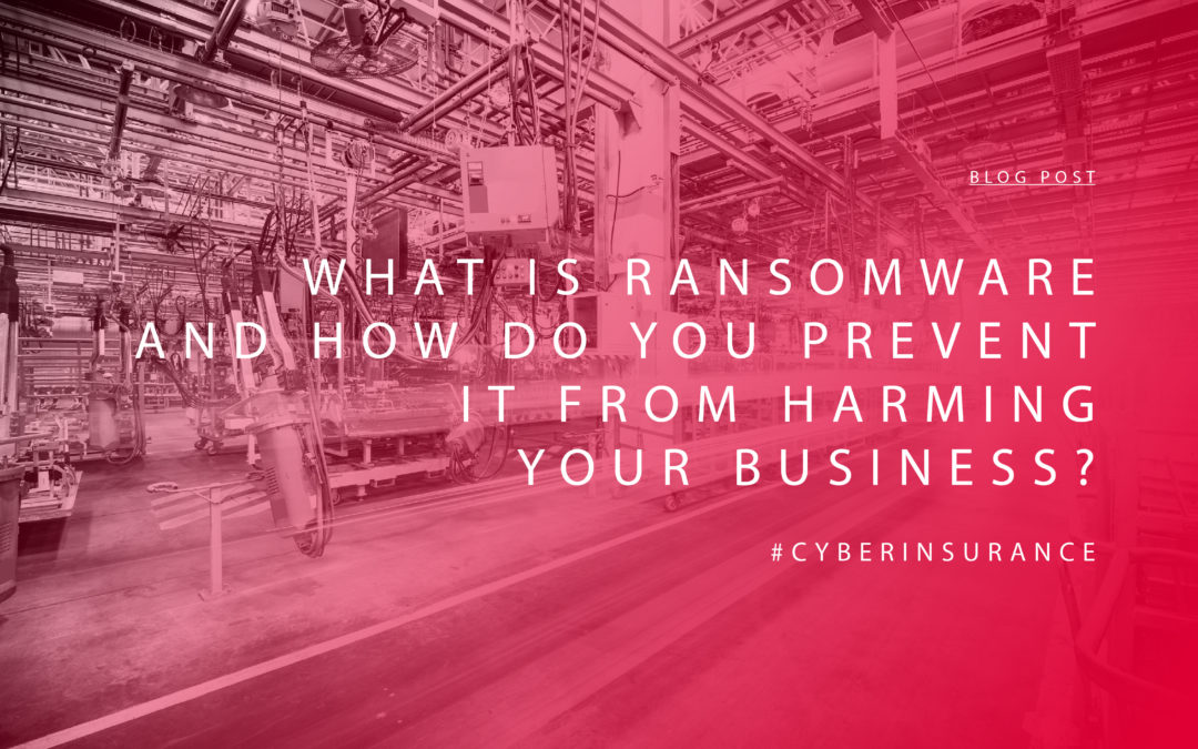 What is Ransomware and How Do You Prevent It from Harming Your Business?